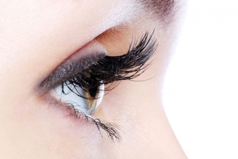 Natural Remedies for Growing Longer Lashes Picture